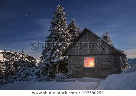 Tündér domb ház természet illusztráció fa Stock fotó © colematt