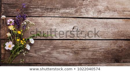 цветы · таблице · старые · деревянный · стол · цветок · природы - Сток-фото © almaje