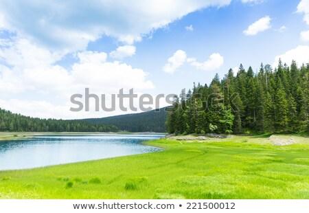 Mooie landschap huis meer bos bergen Stockfoto © MarySan