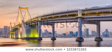 Monorail arco iris puente Tokio Japón paisaje urbano Foto stock © daboost