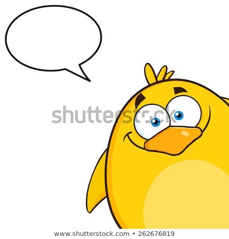Gülen sarı civciv bakıyor köşe Stok fotoğraf © hittoon
