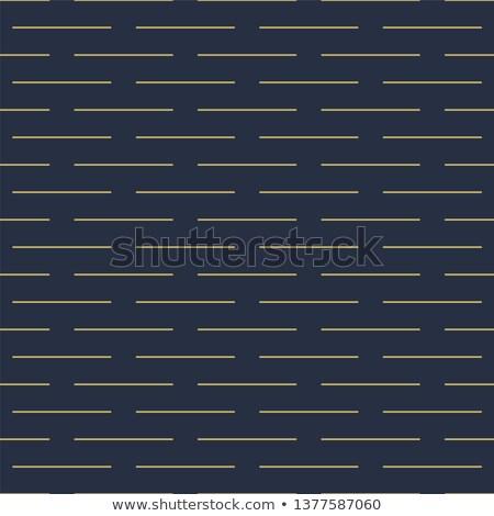 Vettore geometrica senza soluzione di continuità pattern strisce ricca Foto d'archivio © ExpressVectors
