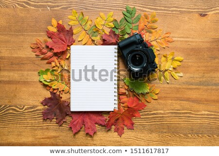 automne · caméra · cadre · table · en · bois · lumière · beauté - photo stock © pressmaster