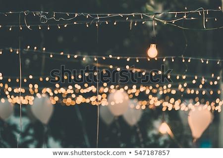 Villanykörte dekoráció szabadtér buli esküvő nap Stock fotó © ruslanshramko