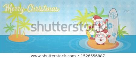 весело Дед Мороз Cartoon острове поиск баннер Сток-фото © doomko