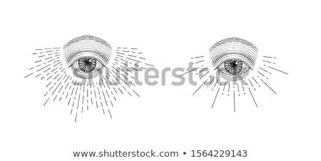 Stylized eye of providence vector logo design Stock photo © barsrsind