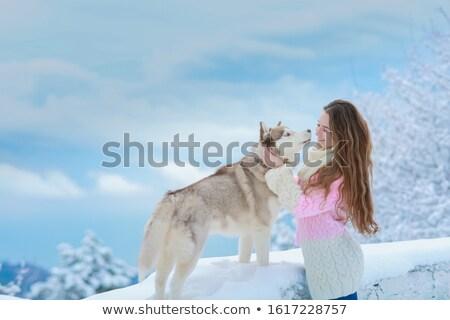 Kadın boğuk köpek yürüyüş kış dağlar Stok fotoğraf © ElenaBatkova