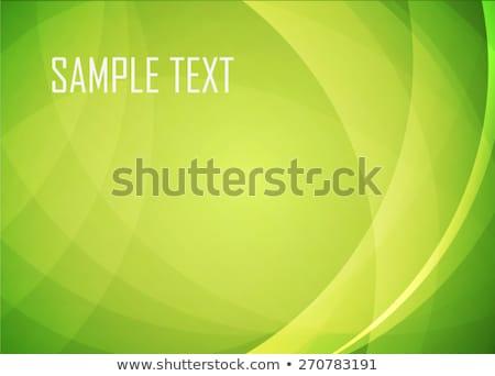green abstract texture pattern and kaleidoscope Stock photo © Arsgera