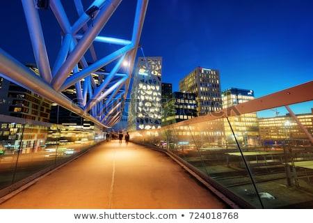 オスロ スカイライン 色 建物 青空 ストックフォト © ShustrikS