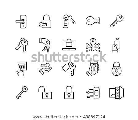 безопасной Код набор икона вектора Сток-фото © pikepicture