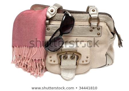 Stock photo: Lady hand-bag in rose charge