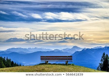 blue bench views stock photo © morrbyte