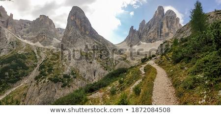 путь итальянский трава дороги природы Сток-фото © Antonio-S