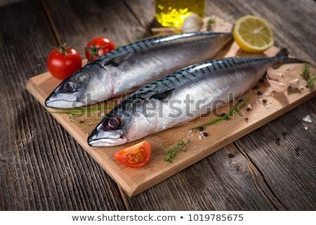 Makréla fej közelkép szem hal halászat Stock fotó © smithore