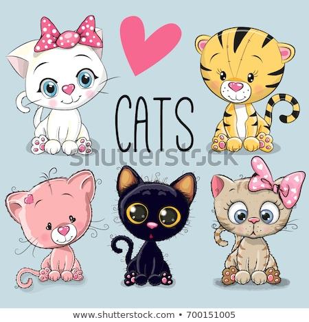 Cute Cartoon gato objetos aislados feliz Foto stock © mumut