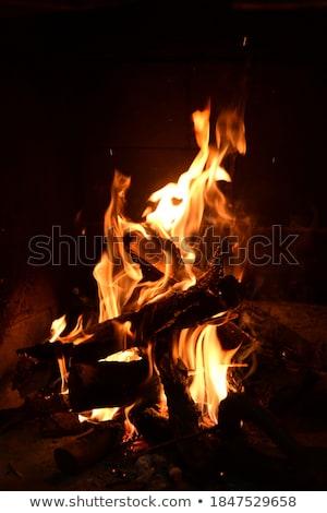 Tűz kályha fény narancs piros gyönyörű Stock fotó © gladcov