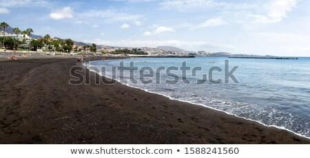 tenerife · İspanya · panoramik · görmek · plaj · dağ - stok fotoğraf © neirfy
