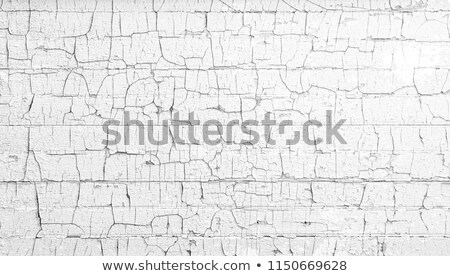 chipped paint Stock photo © guffoto
