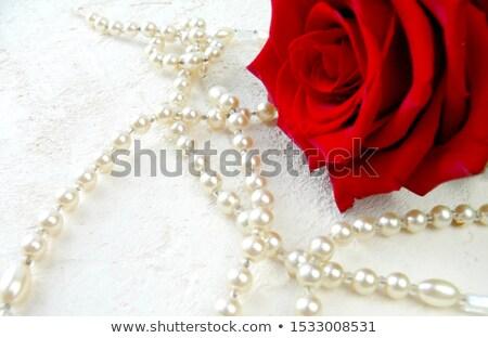 Kırmızı gül inci kolye beyaz arka plan kırmızı Stok fotoğraf © pongam
