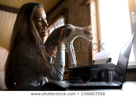 Nő asztal fax iroda telefon otthon Stock fotó © photography33