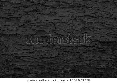 Charred cracked wood Stock photo © pzaxe