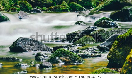 water and stones riverside Stock photo © prill