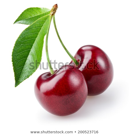 Two cherries on white background stock photo © broker