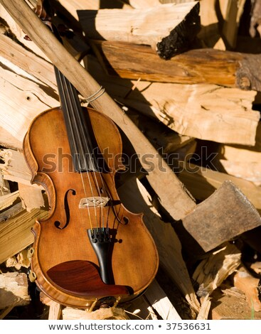 Stock photo: Bored of violin lessons