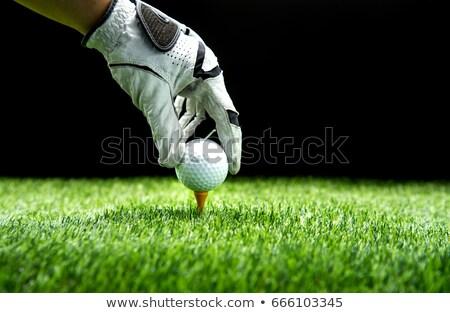 гольфист · вверх · гольф · фитнес · синий - Сток-фото © RTimages