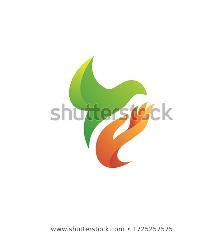 people hand and bird pigeon dove symbol of peace help medical icon love sign vector illustratio stock photo © hermione