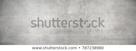 Cinza cimento parede sem costura textura projeto Foto stock © tashatuvango