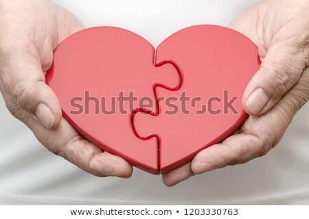 emberi · szív · kardiovaszkuláris · anatómia · egészséges · test - stock fotó © lightsource