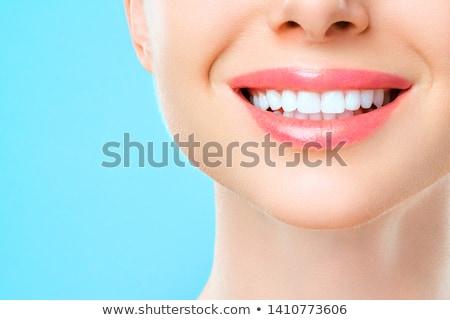 humanos · diente · dentales · símbolo · dentista · medicina - foto stock © Lightsource