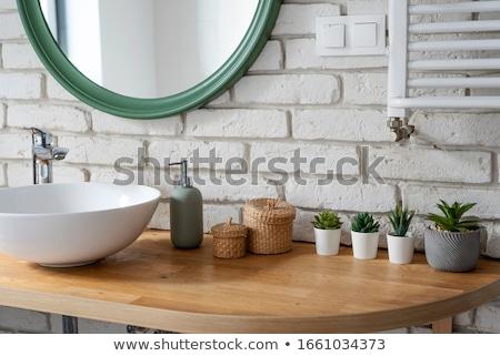 Bano WC cerámica paredes diseno casa Foto stock © ABBPhoto