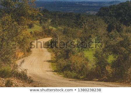 Estrada de terra sul Portugal céu estrada fundo Foto stock © inaquim