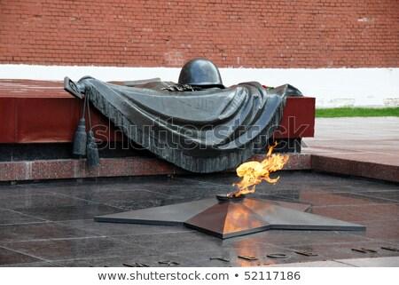 elveszett · hős · nő · tart · összehajtva · zászló - stock fotó © paha_l