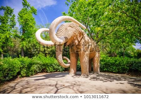 Statue of mammoth in Ciutadella parc, Barcelona Stock photo © Nejron