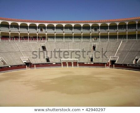 Aréna Madrid város sport naplemente utazás Stock fotó © kasto