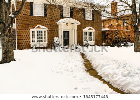 snowy path stock photo © fotoyou