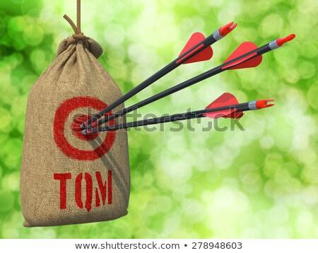 Total Quality Management - Arrows Hit in Red Target. Stock photo © tashatuvango