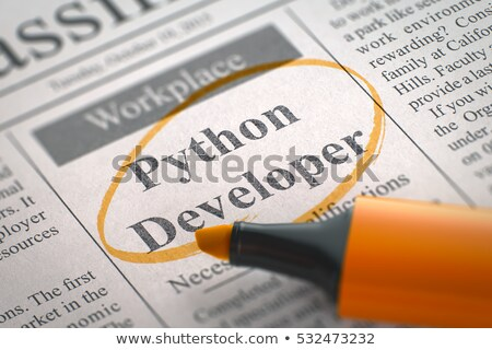 Image result for python developer