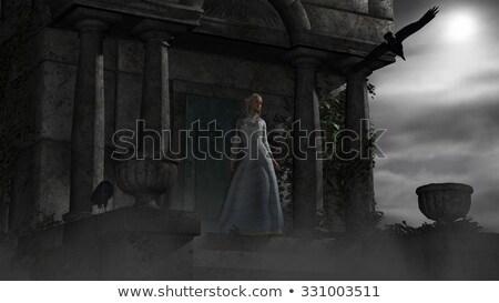 mauzóleum · kép · temető · égbolt · felhők · épület - stock fotó © ankarb
