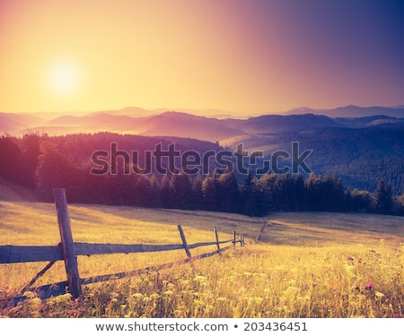 Fantastic sunny hills  Stock photo © goinyk