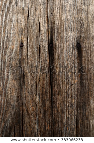 Weathered Old Wood Texture 3 Stock photo © skylight
