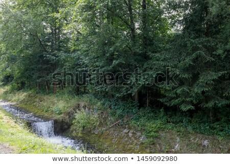 Montanha rio córrego verde cidade paisagem Foto stock © marekusz