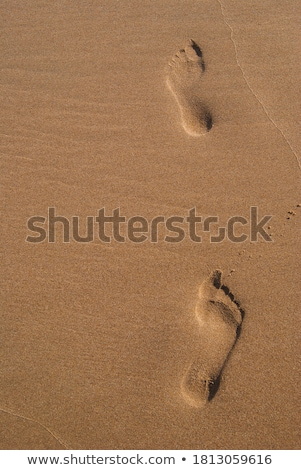 Stock photo: human footsteps at the clean sandy beach