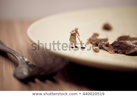 Stockfoto: Miniature Housewife Washing Dirty Dish Macro Photo