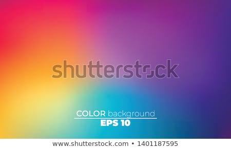Renkli fraktal doğal fenomen matematiksel ayarlamak Stok fotoğraf © yurkina