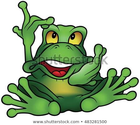 Zöld béka ül mutat színes rajz Stock fotó © derocz