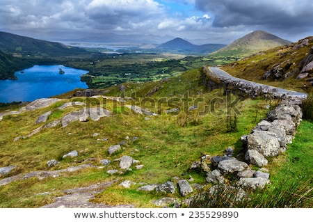 view to Killarney National Park valley in ireland Stock photo © dolgachov